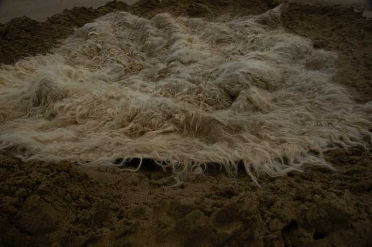 Global burrows art project Elis Vermeulen